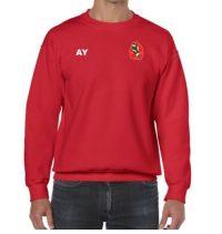 18000B-harborne-hockey-club-sweatshirt-junior-main